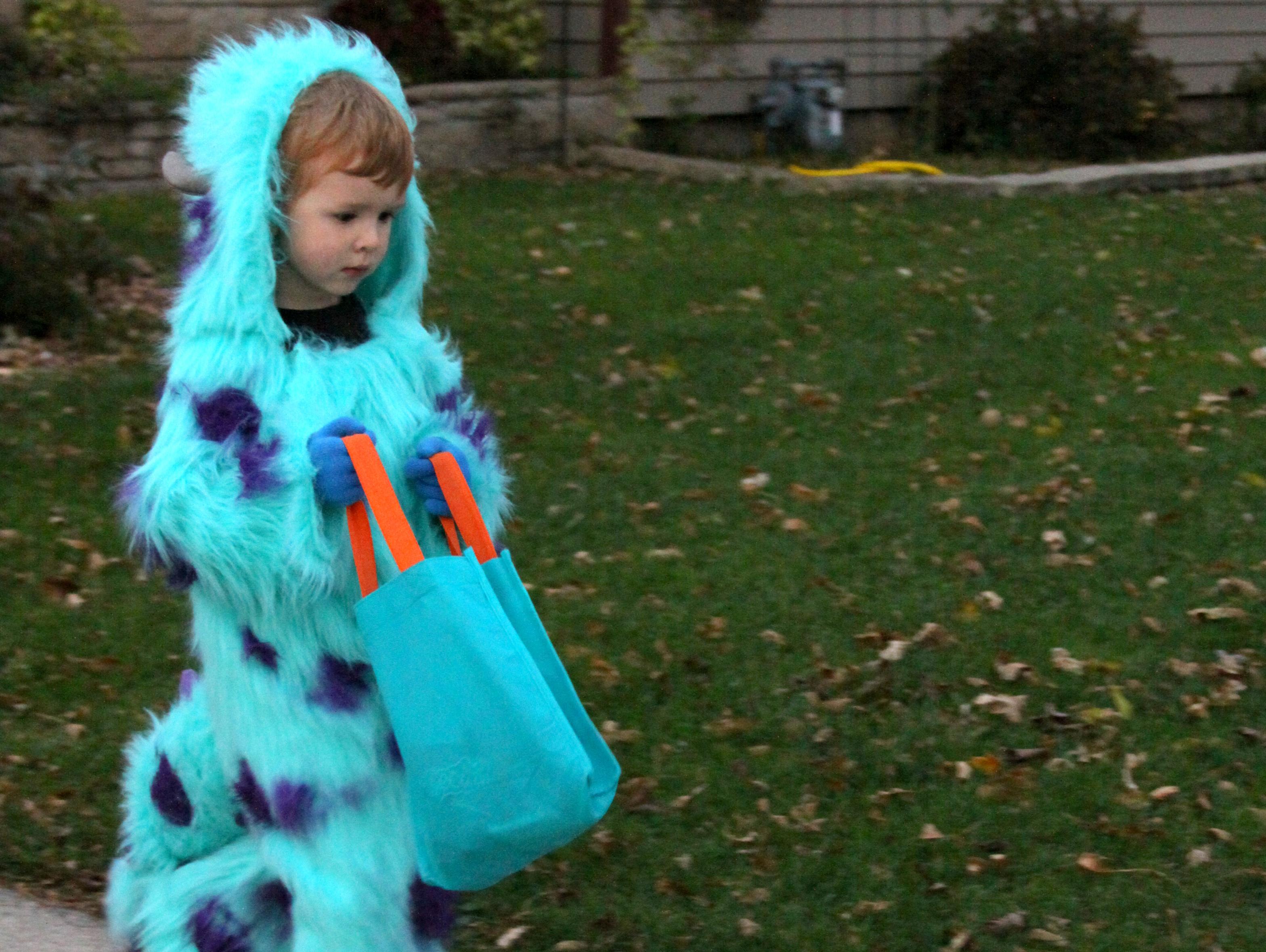 Handmade Monsters University Sully Costume My Diy Nest