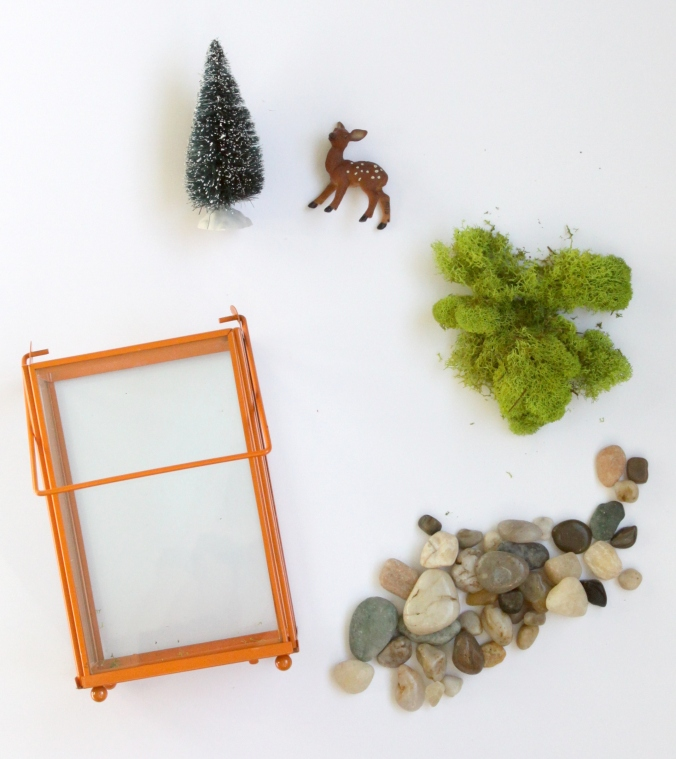 woodland-terrarium_assembly-2